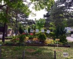 円山動物園庭