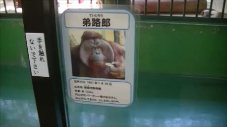 ていじろう  (2016-04-10 10-53)